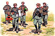 German Elite Infantry /3583/